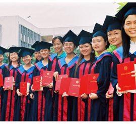 Thực trạng chuyên môn hóa trong giáo dục đại học tại Việt Nam còn yếu